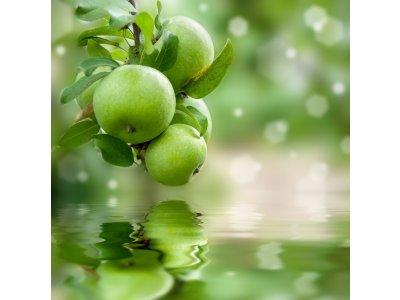 Náplň do osvěžovače POD, SOLO, DUAL - Zelené jablko